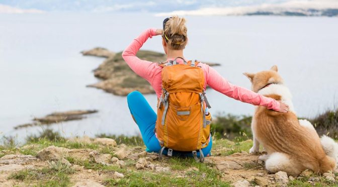 5 Doggone Good Finds for Active Dogs