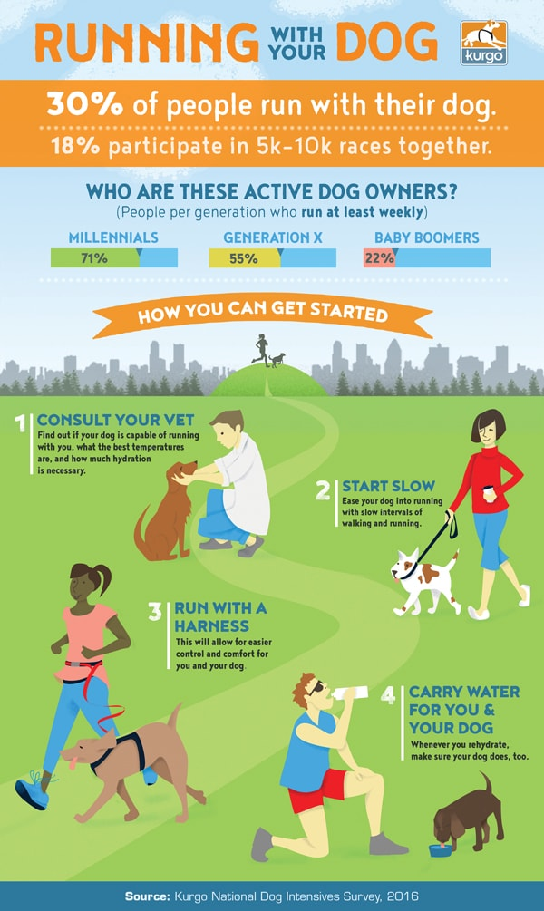 Kurgo Running with Your Dog Infographic